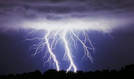 Lightning Protection Is Critical For Your Home And Your Trees